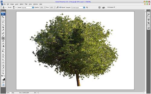 Как отделить зеленое растение от фона за одну минуту