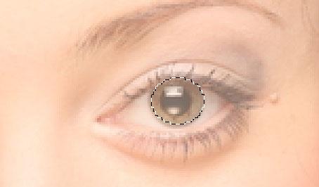 Создание «векторного» портрета в Photoshop