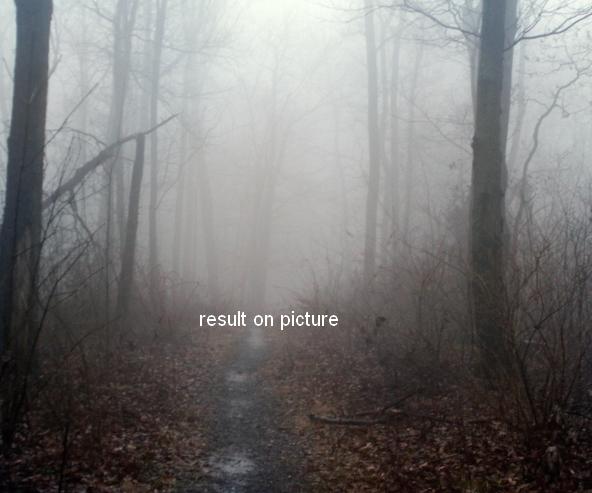 Создаем фотографию эмоциональной осенней сцены