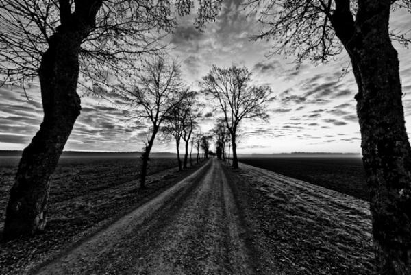 Конвертация Ваших фотографий в потрясающий черно-белый вариант