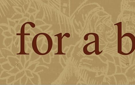 Типографская врезка